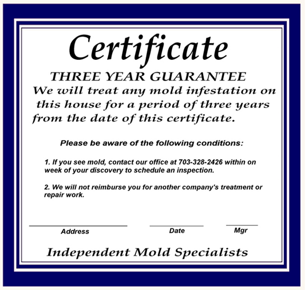 mold removal northern virginia